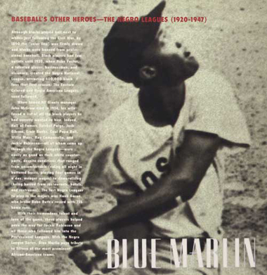 Bluemarlin6
