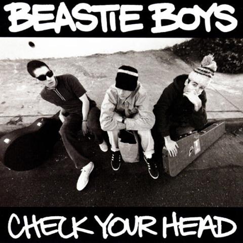 Beastieboyscheckyourhead