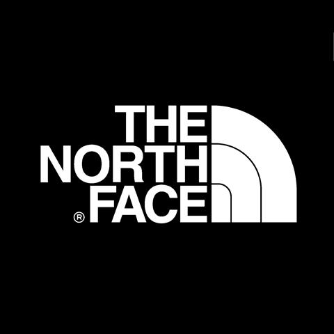 Thenorthfacelogo2